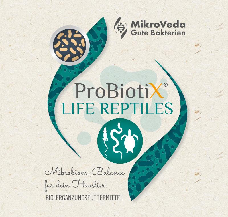ProBiotiX LIFE REPTILES Bio Ergänzungsfutter 250 ml Tropfflasche