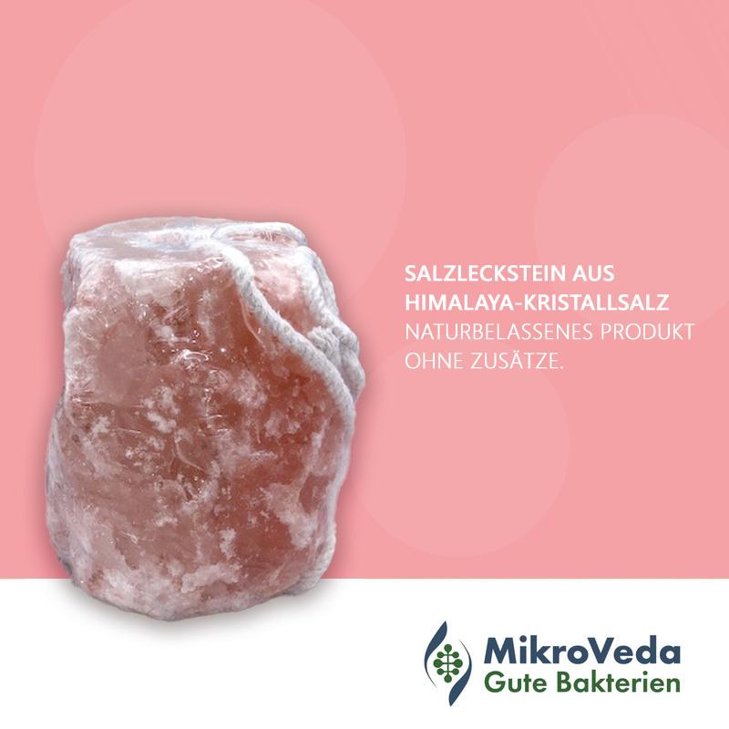 Salzleckstein Kristallsalz aus dem Himalaya-Vorland